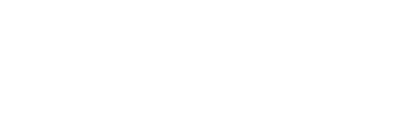 Priv. Doz. Dr. med. habil. Vanessa von Holzschuher Logo